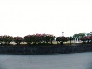 Midorigaoka Sports Park
