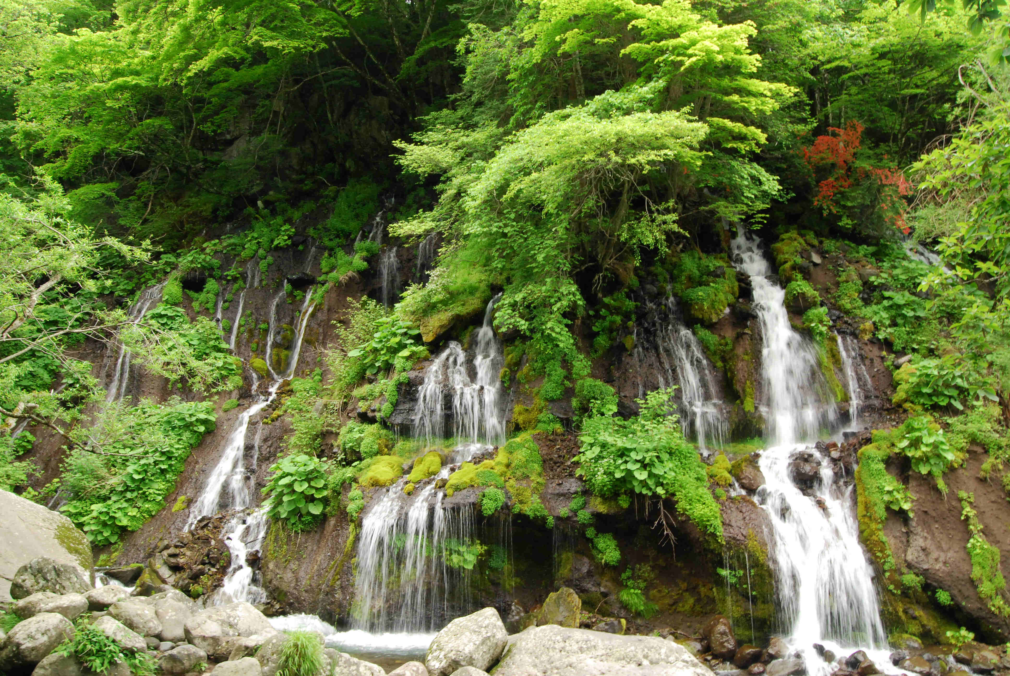 Katya Y111 Waterfall