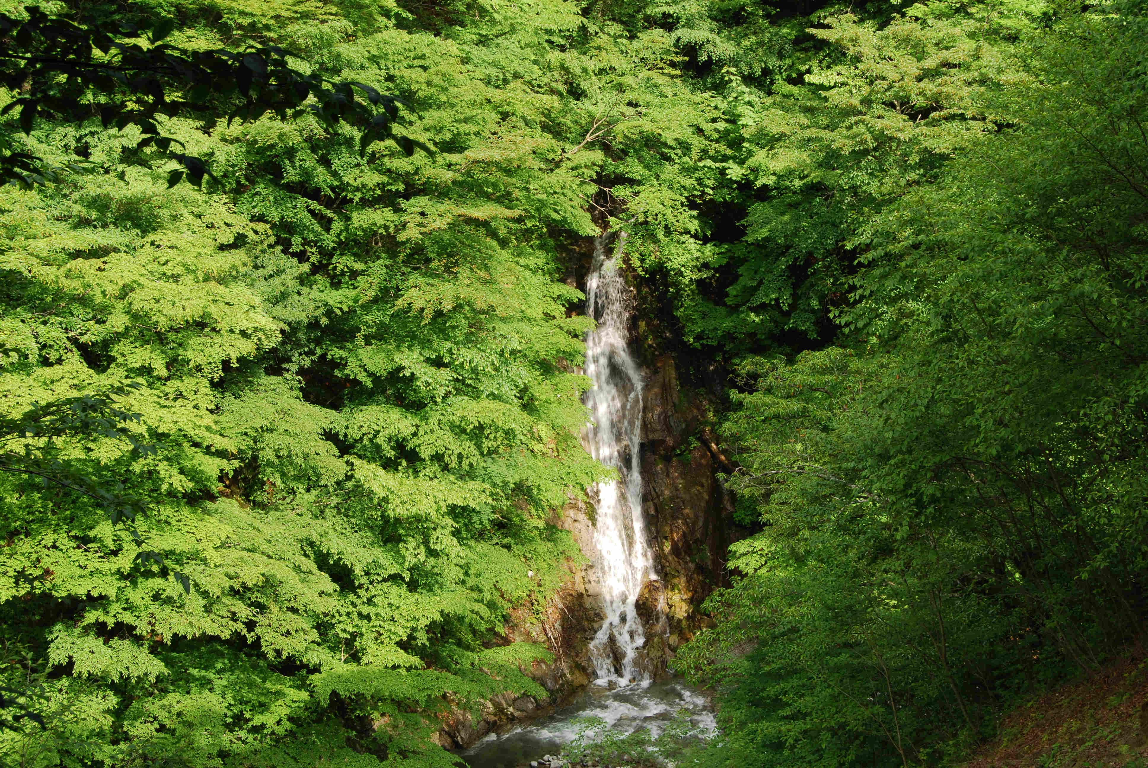 Okubo Waterfall of Nishizawa Valley, Yamanashi, Japan