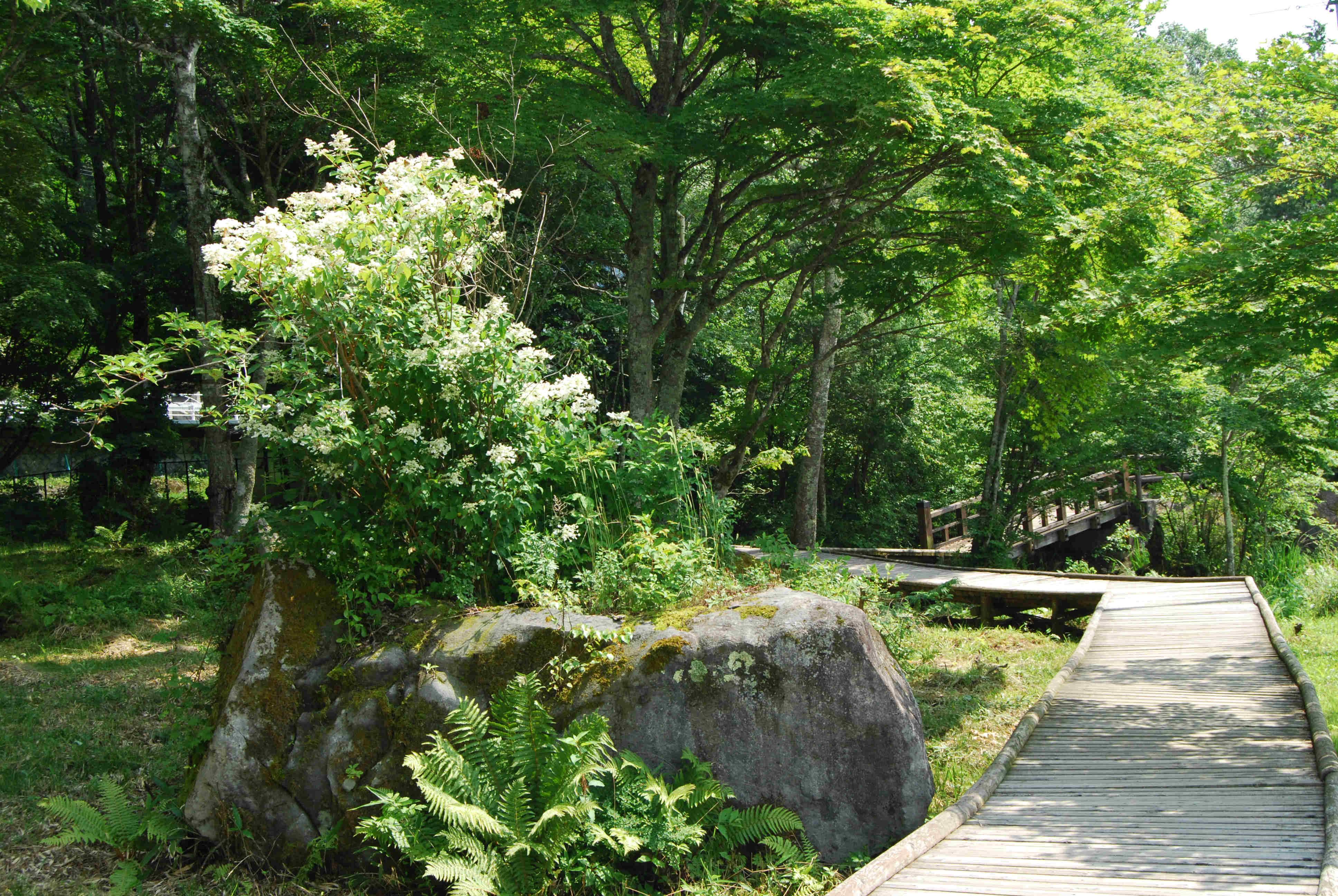 Lake Shirakaba-ko, Chino, Nagano